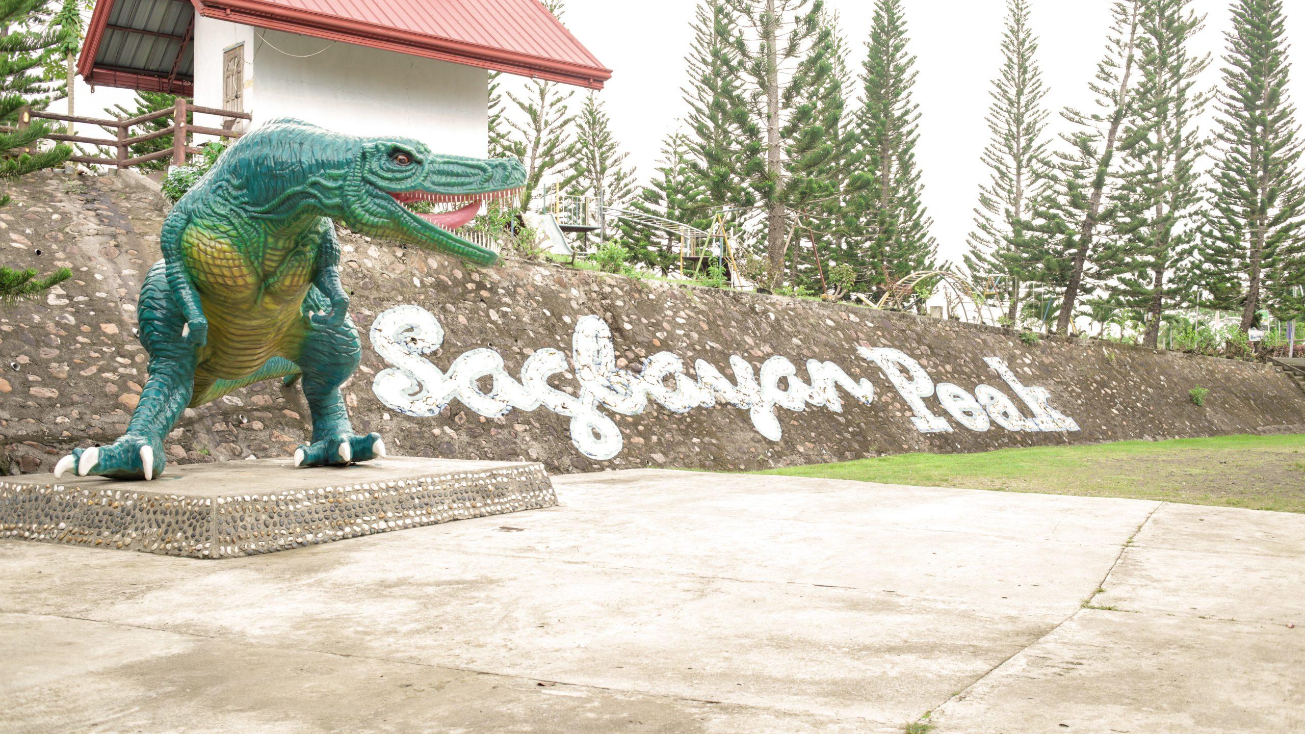 Bohol Chocolate Hills Philippines Sagbayan Peak